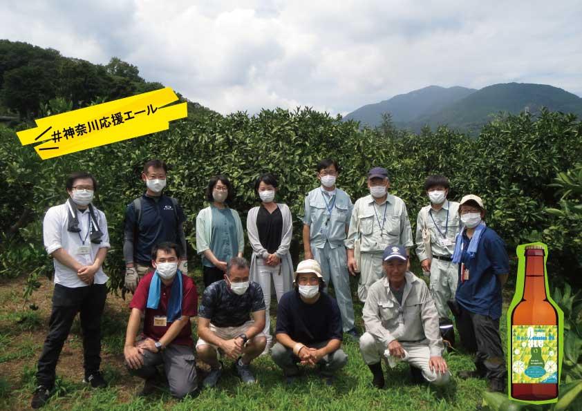 神奈川県伊勢原市、鳥獣被害と戦う農家をクラフトビールで支援します。
